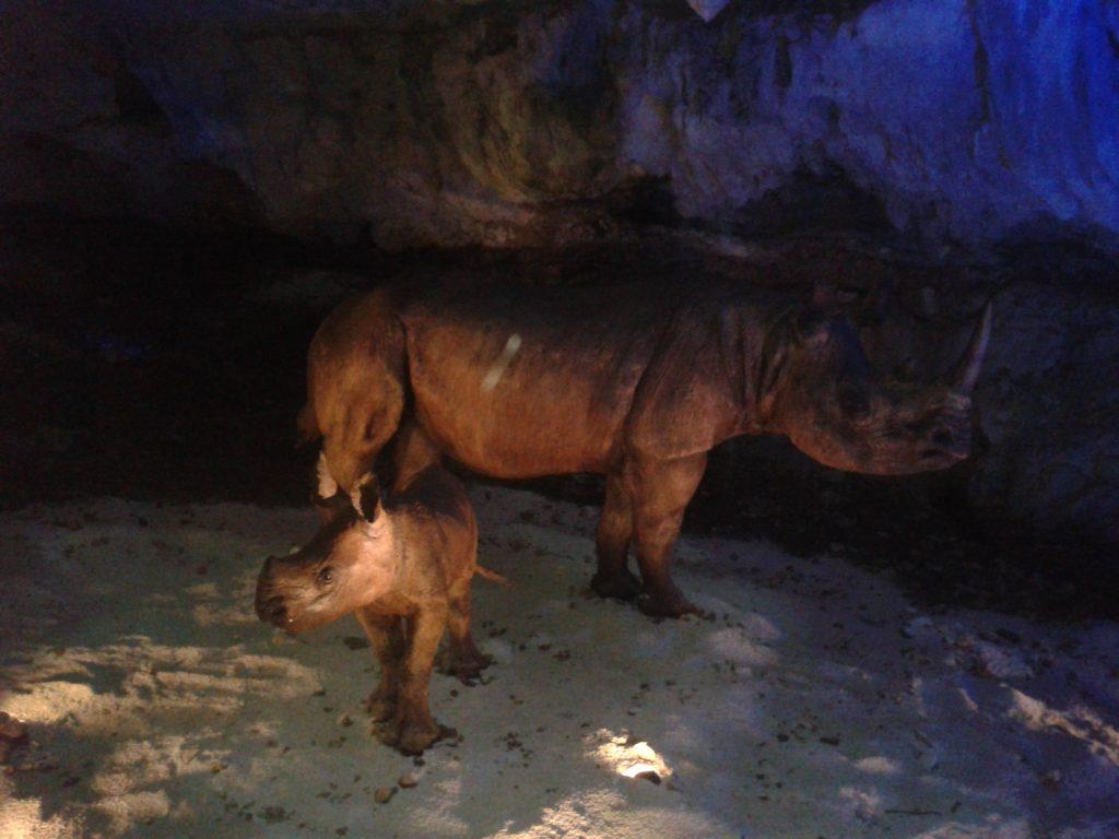 replica-de-rinoceronte-y-su-cria-avin